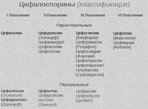 цефалоспорины классификация