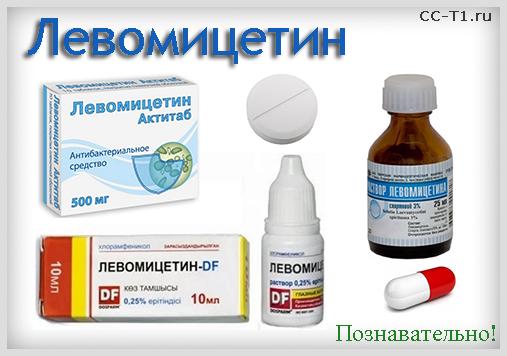 Левомицетин актитаб от поноса. Левомицетин Актитаб: от чего помогает, показания к применению, состав. Левомицетин Актитаб противопоказания