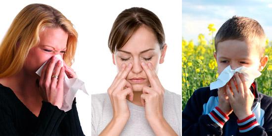 заболевания верхних дыхательных путей: ринит, гайморит, аллергический насморк