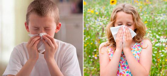 ринит и аллергический насморк