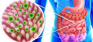 инфекция ротовируса в жкт