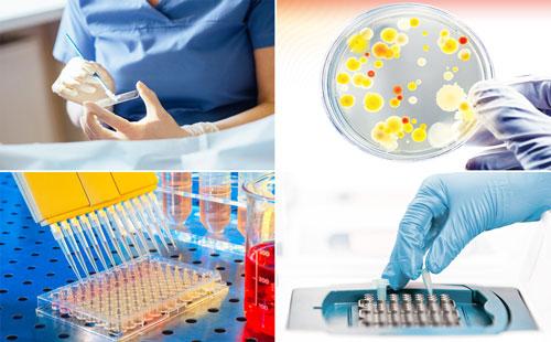 рекомендованные диагностические методы: мазок, посев, ИФА, ПЦР при гонорее