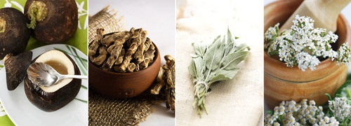 средства народной медицины: черная редька, аир, листья шалфея, трава тысячелистника