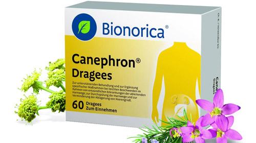 препарат Канефрон для поддержки функции почек