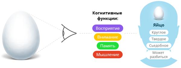 Тренировка когнитивных функций