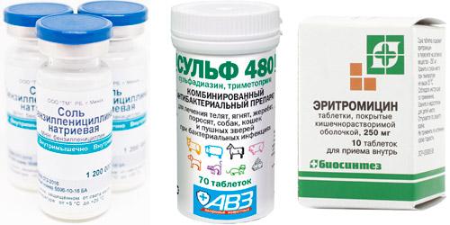 профилактические препараты: Бензилпенициллин, Сульфадиазин, Эритромицин
