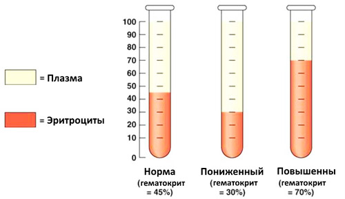 норма гематокрита, повышенный уровень и пониженный