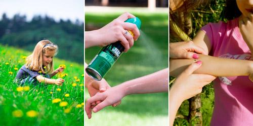 правила поведения на природе для предотвращения клещевого энцефалита