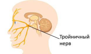 тройничный нерв на лице
