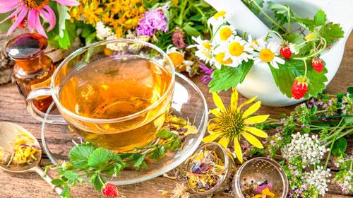 травяной чай и целебные травы