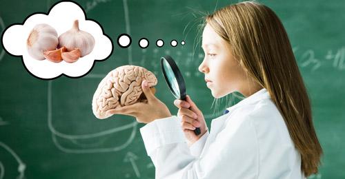 девочка с макетом мозга человека