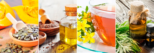 средства народной медицины от глистов: семечки тыквы, масло льна, отвар зверобоя и полыни