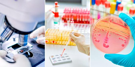 способы диагностики инфекции