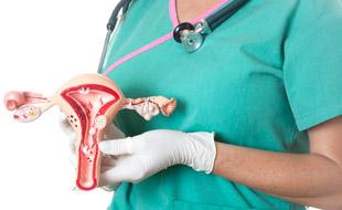врач с макетом женских внутренних органов