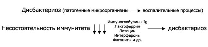 схема возникновения дисбактериоза слизистых оболочек
