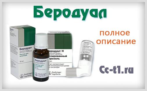 беродуал инструкция по применению спрей img-1